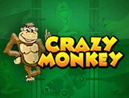 Crazy Monkey – бесплатные аппараты Вулкана
